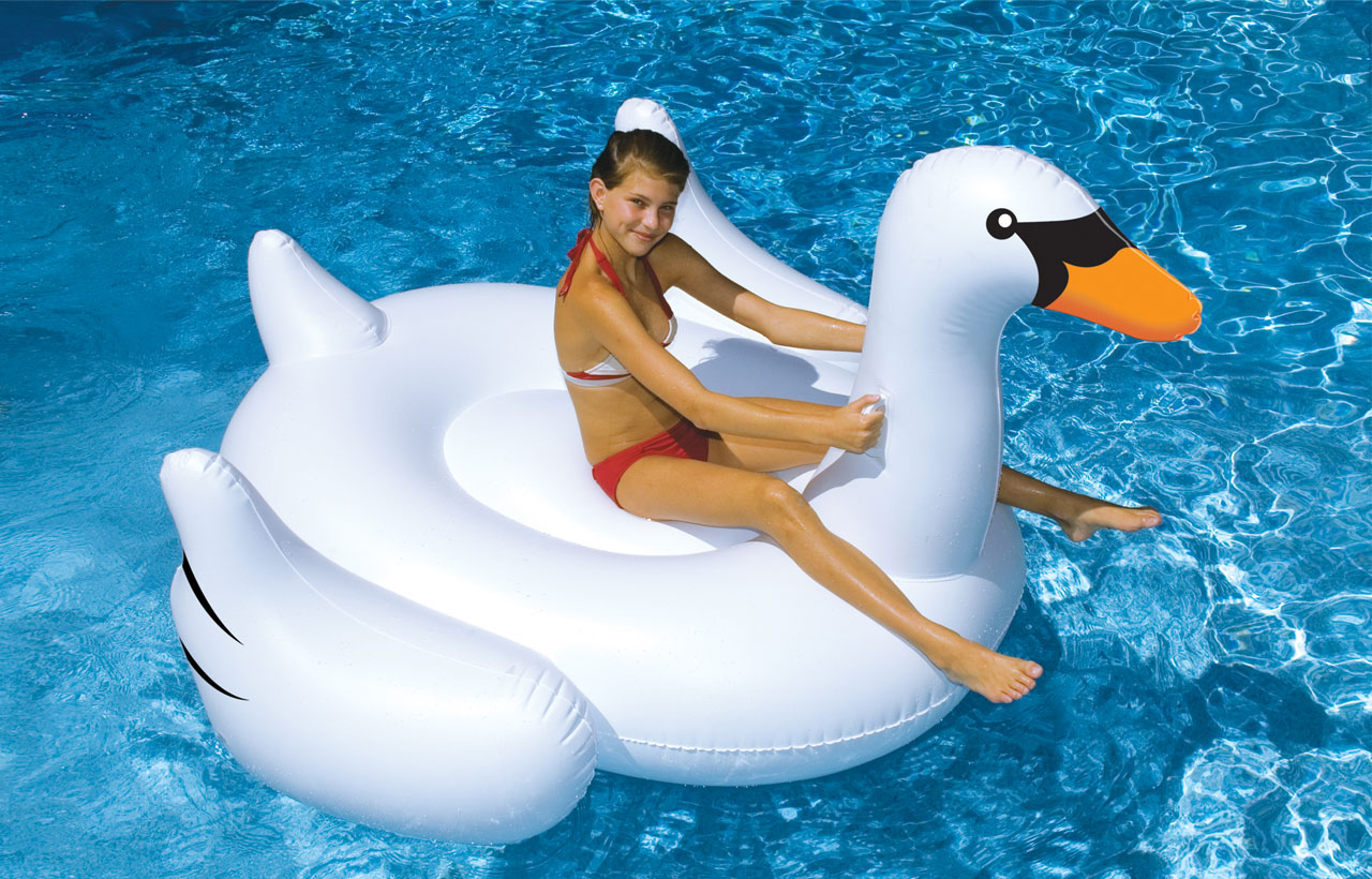 Swan Floats are Back! #SwanLife